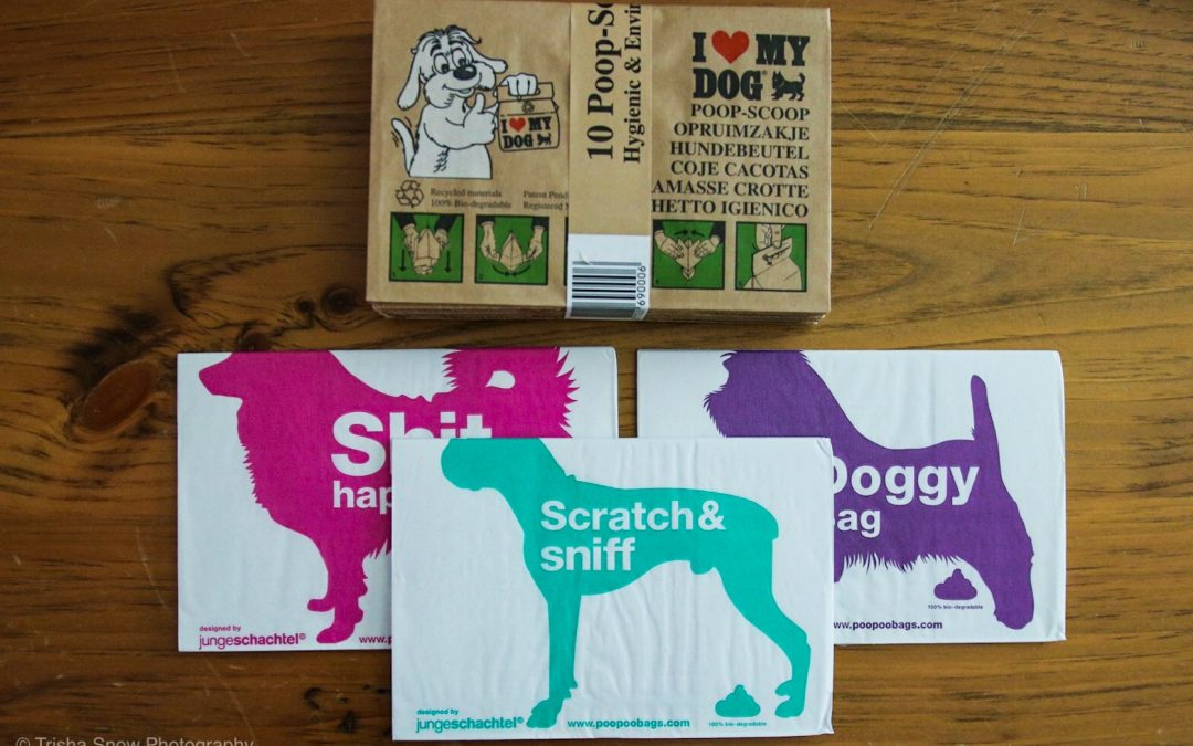 100% Biodegradable, Environmentally Friendly Dog Products