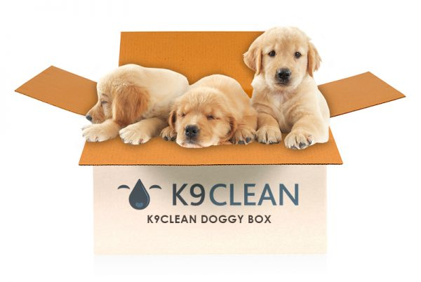 Some puppies hanging out in the K9 Clean Doggy Box; they know it's the best dog box!