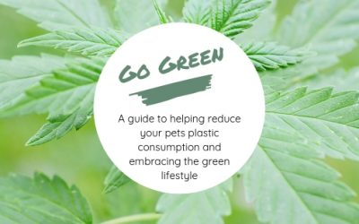 Go Green this 420 – A guide to helping your pet reduce plastic consumption and embracing the green lifestyle