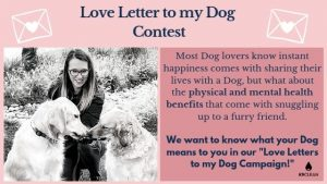 Best Biodegradable Dog Poop Bags, Love letter to my Dog CampaignLove Letter to My Dog Contest
