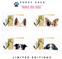 Limited Edition Puppy Thank You Cards
